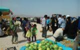 گرانی اقلام و خطر فقدان سلامت بوشهری ها/جمعه بازار فرصت است یا تهدید؟