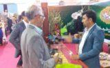 برپایی اولین جشنواره و نمایشگاه خرما و صنایع وابسته در بوشهر