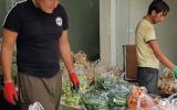 شهرداری دلوار برای کاهش گرانی آستین ها را بالا زد+عکس